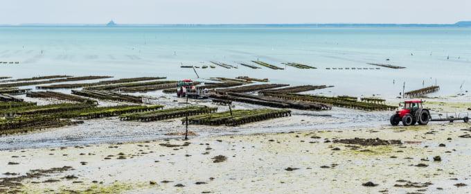 transfert vers ports et plages depuis libourne en gironde